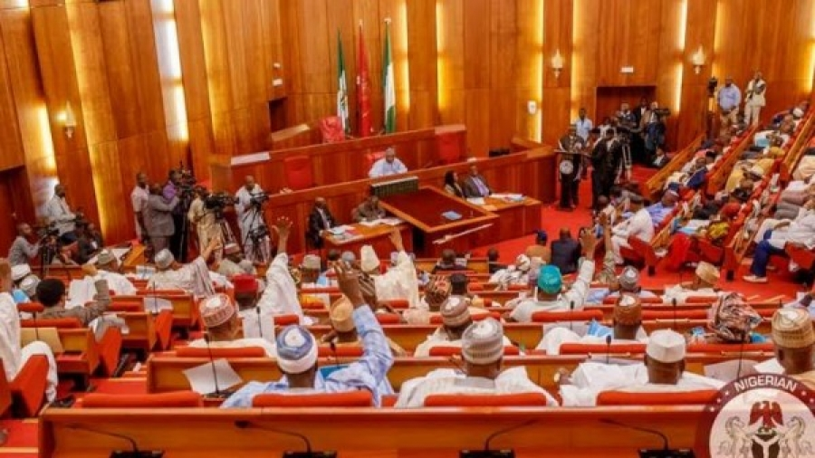 Senate passes 2020 budget with N2.9tr for debt service